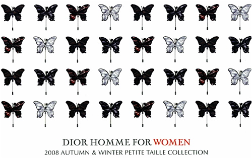 dior homme petite taille Dior Homme for Women 08/09 A/W Collection