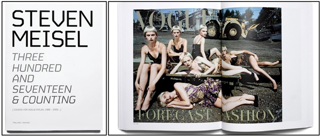THREE HUNDRED AND SEVENTEEN & COUNTING by Steven Meisel