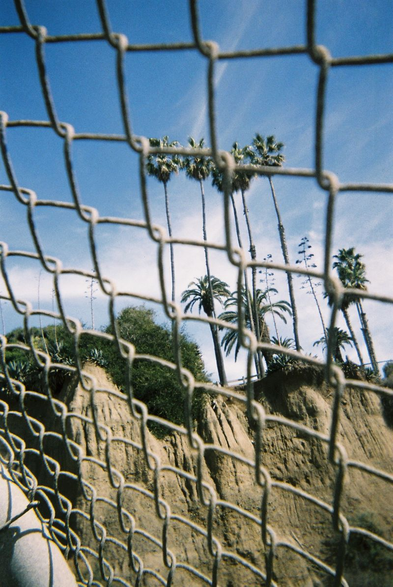 Disposable Lives Los Angeles 07 DISPOSABLE LIVES IN LOS ANGELES