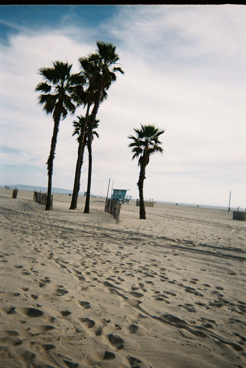 Disposable Lives Los Angeles 12 DISPOSABLE LIVES IN LOS ANGELES
