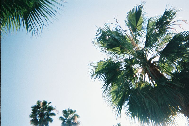 Disposable Lives Los Angeles 22