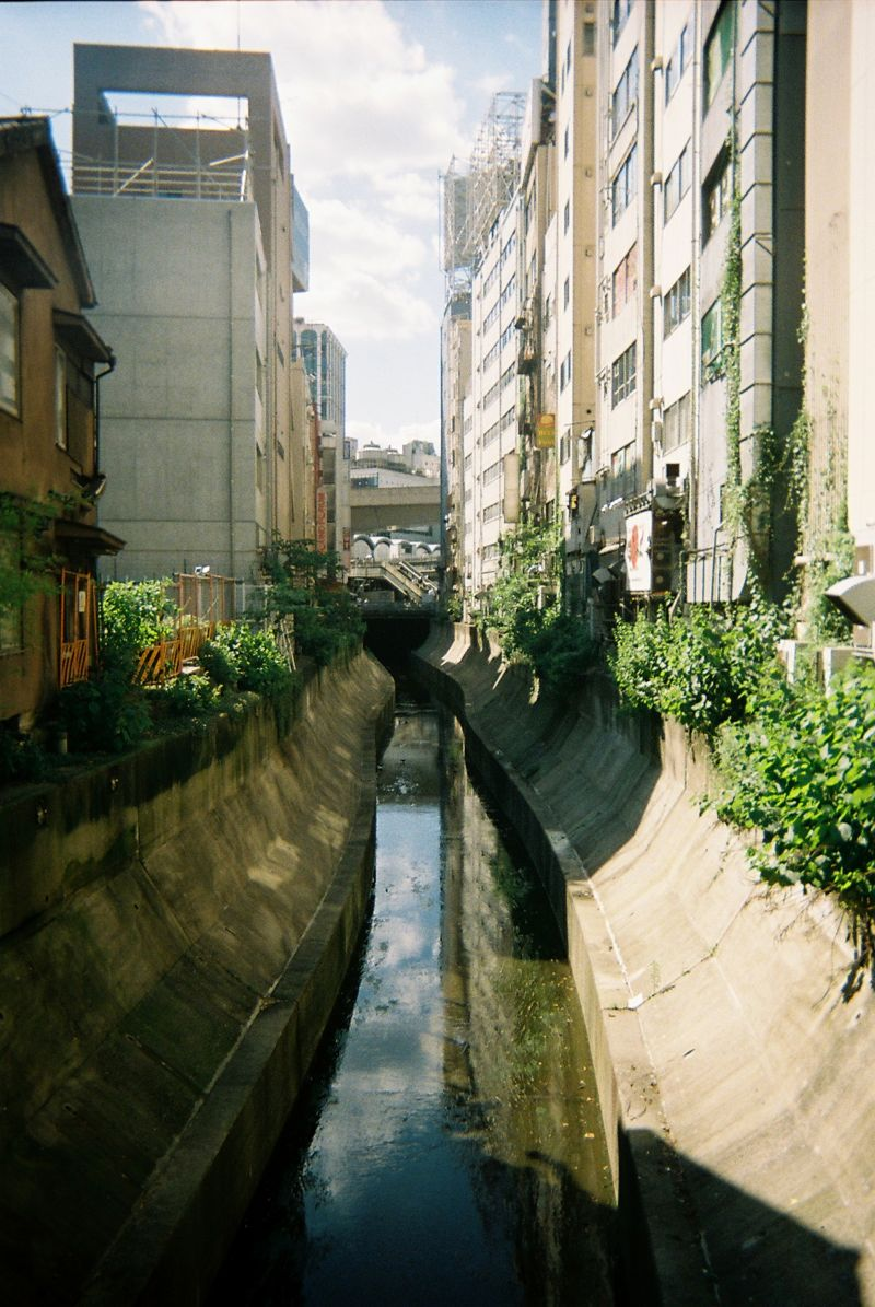 Disposable lives disposable camera photos japan by dan bailey 03 DISPOSABLE LIVES