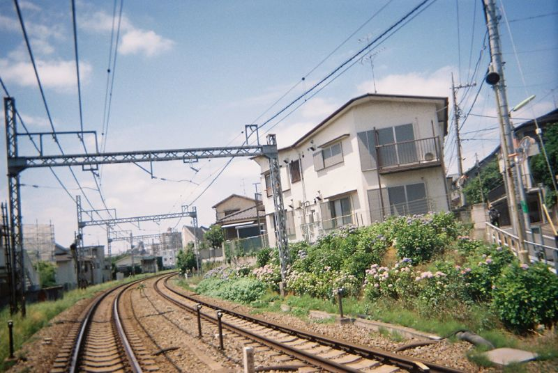 Disposable lives disposable camera photos japan by dan bailey  22