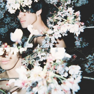disposable_lives_kuro_the_boy_and_the_cherry_blossoms1